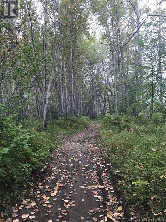 Residential property for sale at 35 Wapiti River Recreation  Beaverlodge Alberta - MLS: GP209024