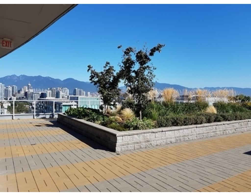 For Sale: 350 - 550 W Broadway, Vancouver, BC Property for $485,000. See 10 photos!
