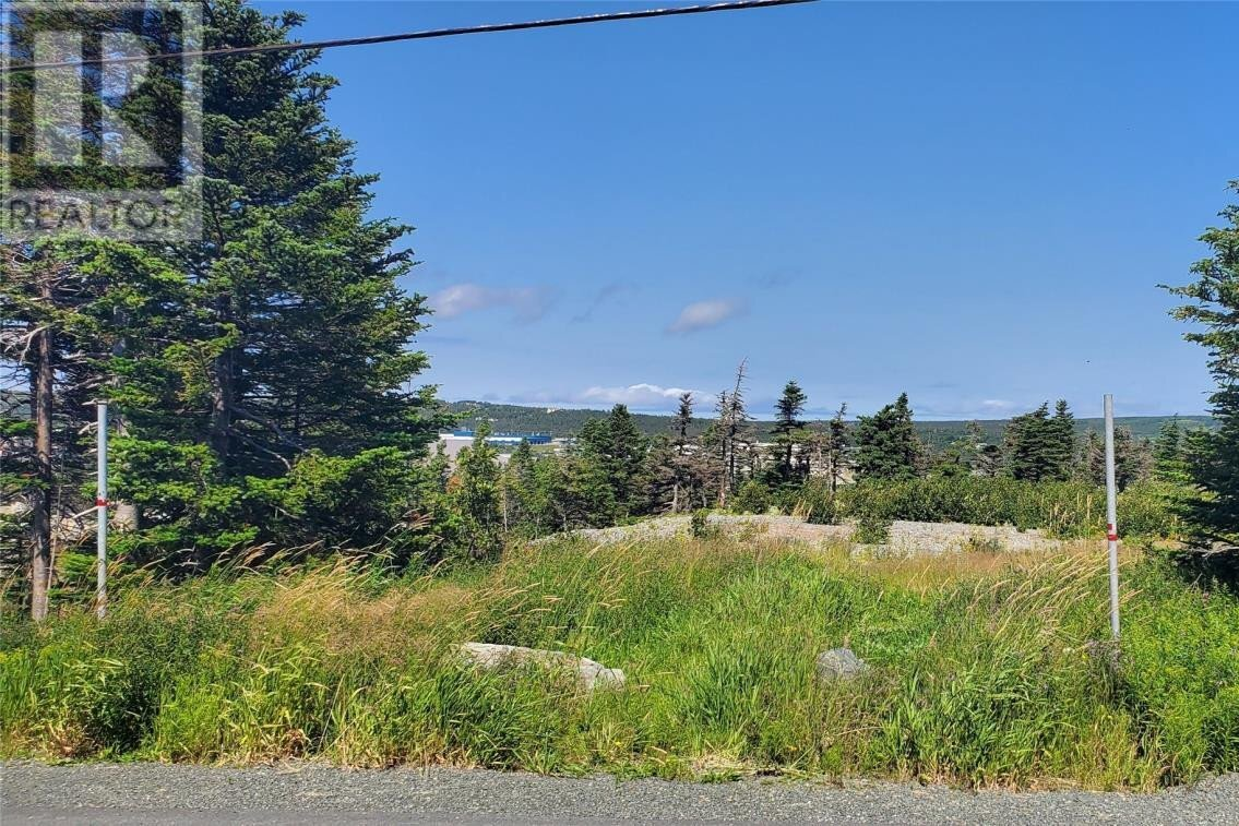 Home for sale at 364 Old Pennywell Rd St. John's Newfoundland - MLS: 1218601