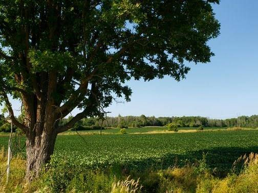 Residential property for sale at 3964 John Shaw Rd Kinburn Ontario - MLS: 1163258