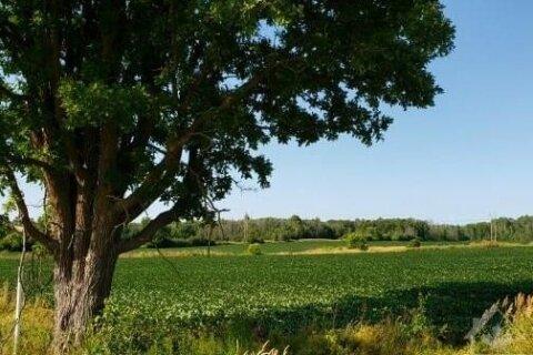 Home for sale at 3964 John Shaw Rd Kinburn Ontario - MLS: 1218745