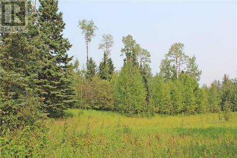 4 Forest Close, Rural Clearwater County | Image 1