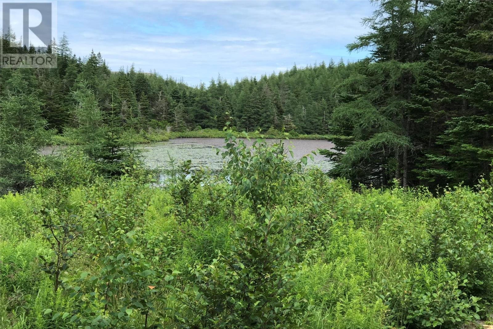 Home for sale at 4 Lilly Pond  Carbonear Newfoundland - MLS: 1218190