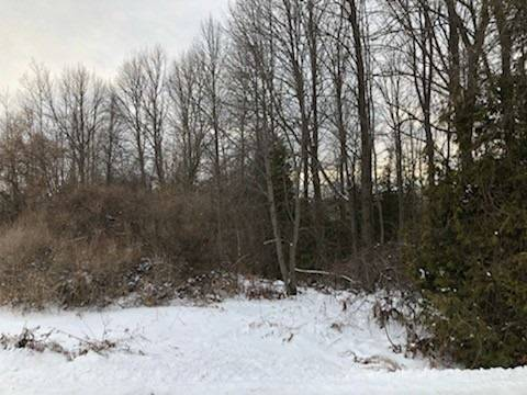 Residential property for sale at Lot 4 Ball Point Rd Kawartha Lakes Ontario - MLS: X4675564