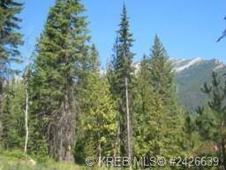 Residential property for sale at 0 Cunliffe Rd Unit 4 Fernie British Columbia - MLS: 2439196