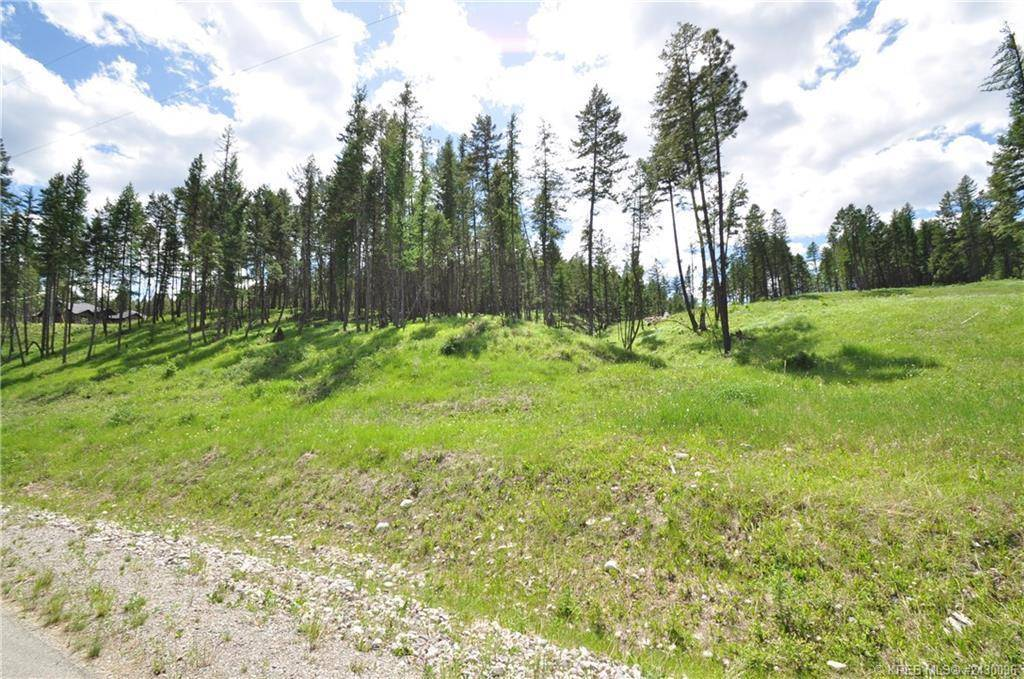 Residential property for sale at Lot 4 Foothills Drive  Unit 4 Ft. Steele To Wardner British Columbia - MLS: 2450784