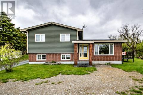 House for sale at 4 Salmon Cove Rd South River Newfoundland - MLS: 1195066