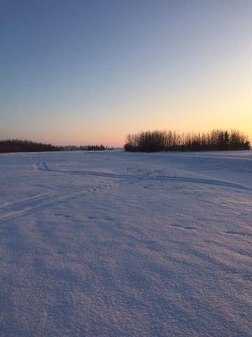 Home for sale at 40 Edith Cres Rural Sturgeon County Alberta - MLS: E4187557