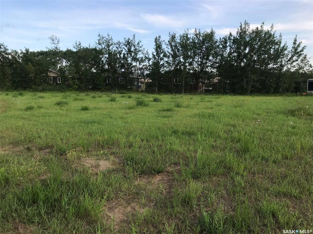 Residential property for sale at 401 Park Dr Tobin Lake Saskatchewan - MLS: SK781543