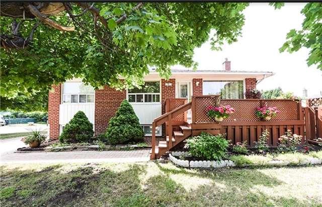 Sold: 41 Mcculla Avenue, Brampton, ON