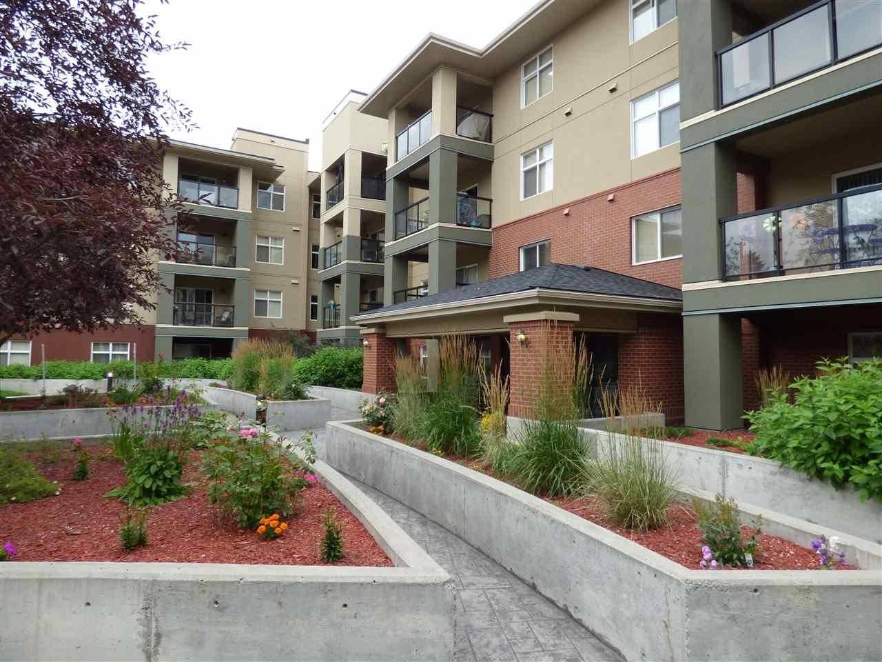 Condo for sale at 7909 71 St Nw Unit 419 Edmonton Alberta - MLS: E4169500