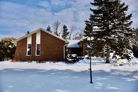 House for sale at 42 Boreham Circ Brampton Ontario - MLS: W4693907