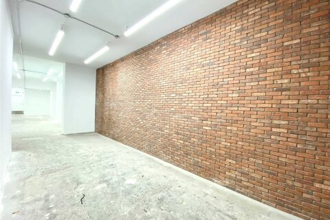 Commercial property for lease at 429 Spadina Ave Toronto Ontario - MLS: C4990349