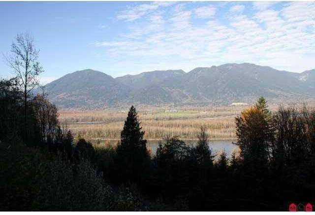 Home for sale at 43998 Chilliwack Mountain Rd Chilliwack British Columbia - MLS: C8028505