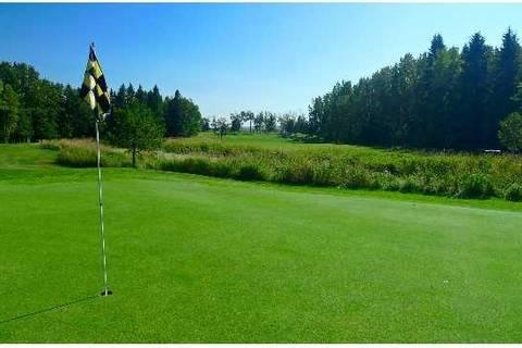 Residential property for sale at 454029 Rge Rd Rural Wetaskiwin County Alberta - MLS: E4157534