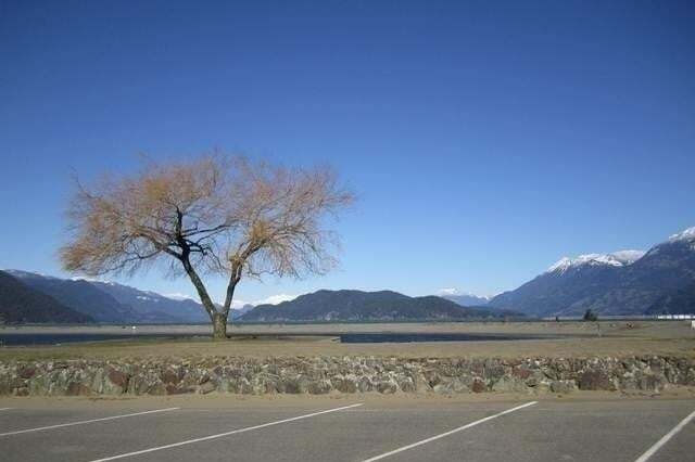 Residential property for sale at 470 Esplanade Ave Harrison Hot Springs British Columbia - MLS: C8033541