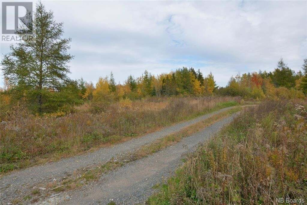 Residential property for sale at 49 Sunpoke Rd Rusagonis New Brunswick - MLS: NB050146