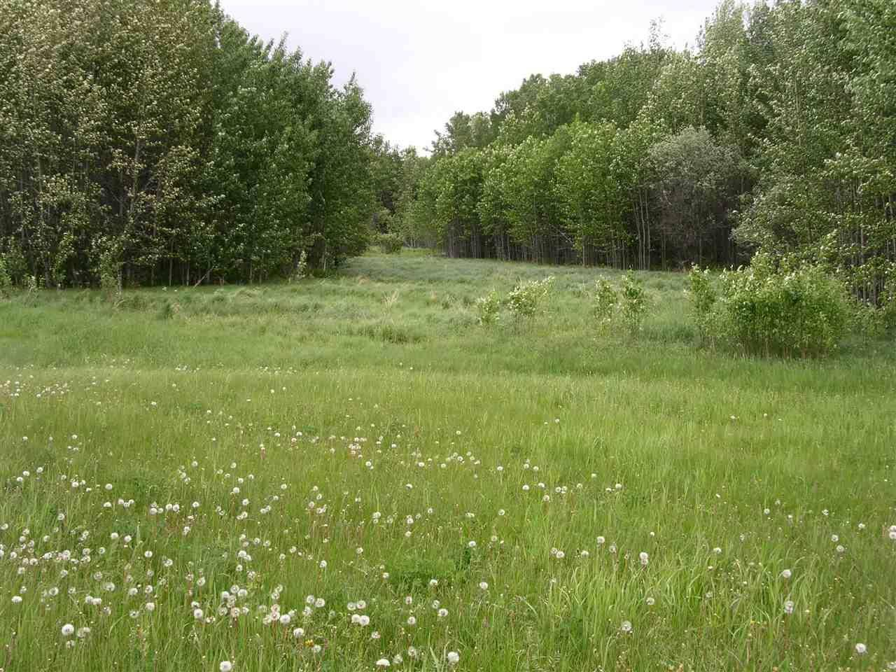 Home for sale at 4 Swq  Unit 5 Rural Lac Ste. Anne County Alberta - MLS: E4166517