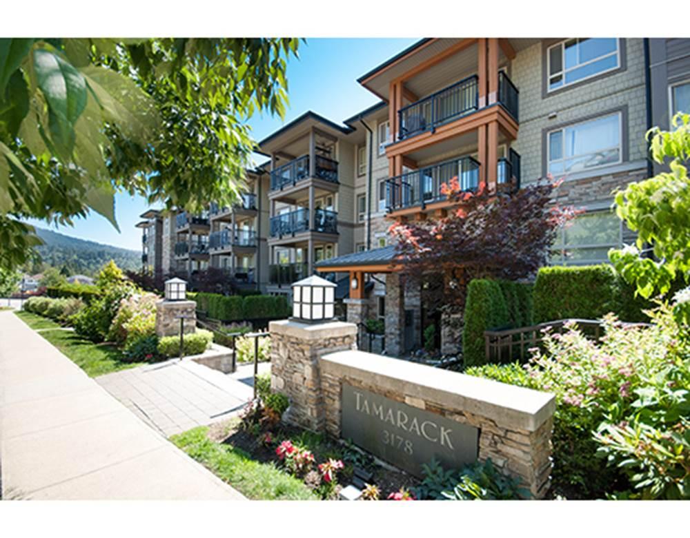 Sold: 503 - 3178 Dayanee Springs Boulevard, Coquitlam, BC