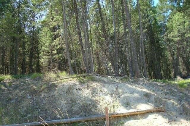 Residential property for sale at 51 Osprey Landing Drive  Wardner British Columbia - MLS: 2430051