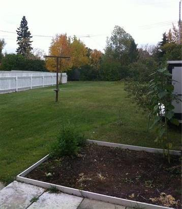 5131 55 Avenue, Stavely | Image 2