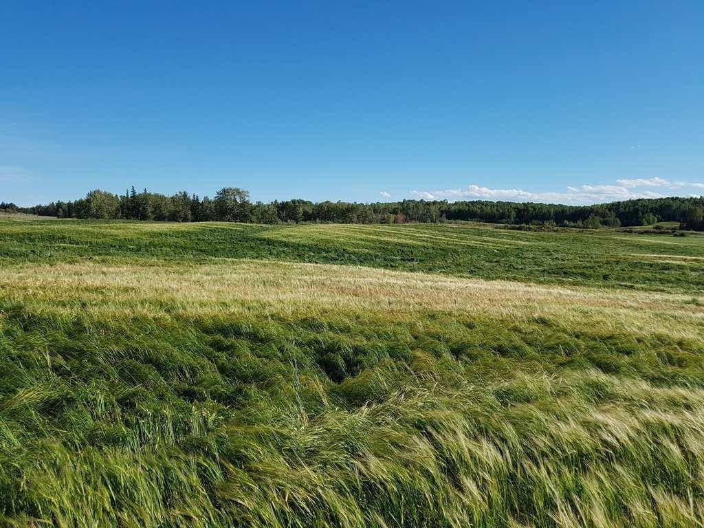52515 Rge Road, Rural Parkland County | Image 1