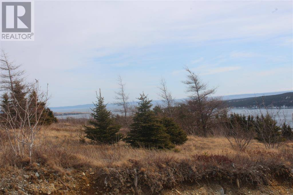 54 Bunker Hill, Carbonear | Image 2
