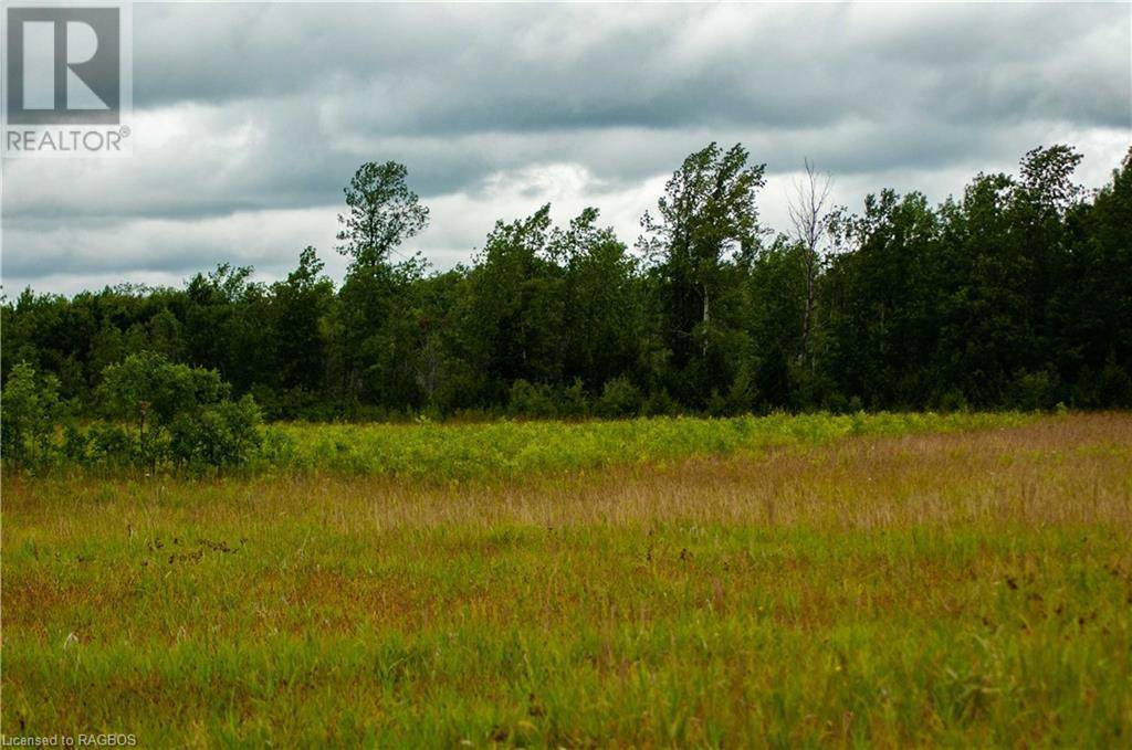 Home for sale at 56 Old Oliphant Rd Wiarton Ontario - MLS: 246835