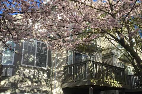 Townhouse for sale at 3880 Westminster Hy Unit 57 Richmond British Columbia - MLS: R2356862