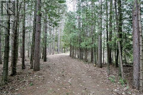 574251 Sideroad 40 Sideroad, West Grey | Image 2