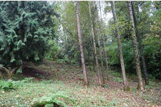 Residential property for sale at 5829 Promontory Rd Sardis British Columbia - MLS: R2474092