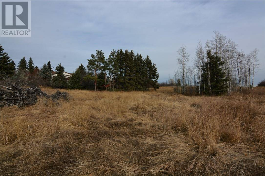 Residential property for sale at 602 5 Ave Elnora Alberta - MLS: ca0152223