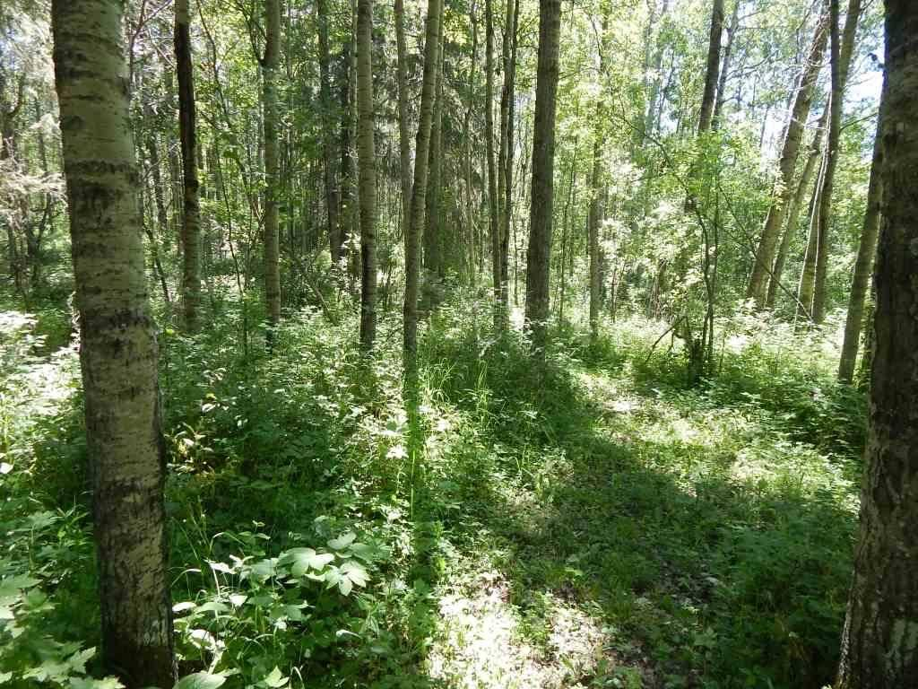 Residential property for sale at 464030 Rge Rd Unit 61 Rural Wetaskiwin County Alberta - MLS: E4141500