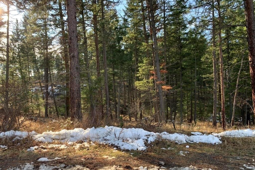 Home for sale at 667 Muir Rd Kelowna British Columbia - MLS: 10220225