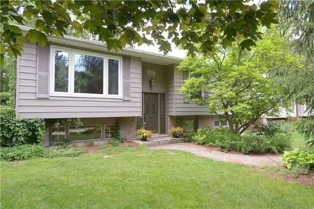 Sold: 71 Nelson Street, Hamilton, ON