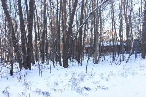 Residential property for sale at 710 Steinkrauss Dr Smith-ennismore-lakefield Ontario - MLS: X4654046