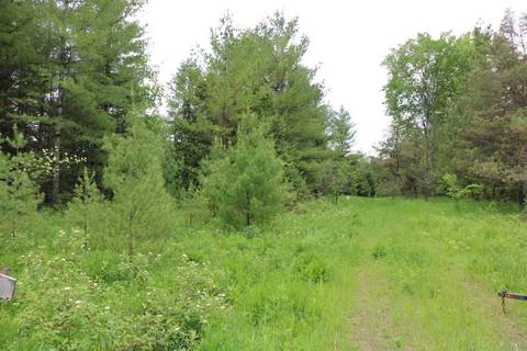 Residential property for sale at 736150 West Back Line Rd Chatsworth Ontario - MLS: X4400937