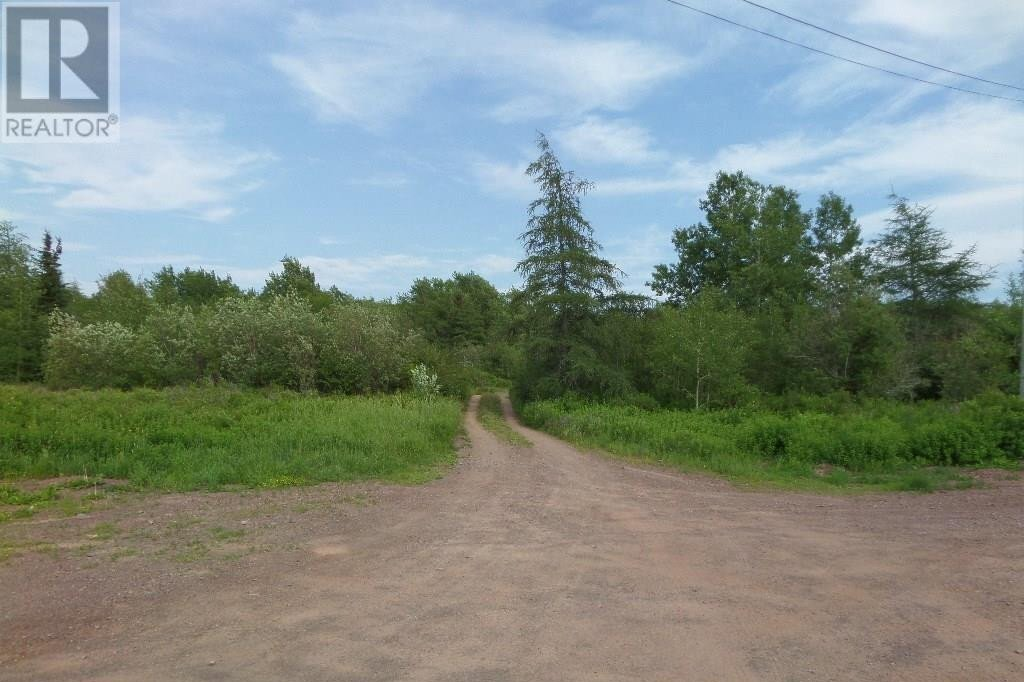 Home for sale at 74 Valley Rd Botwood Newfoundland - MLS: 1200066