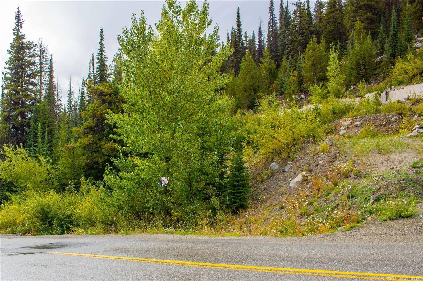 Home for sale at 7450 Porcupine Rd Big White British Columbia - MLS: 10192367