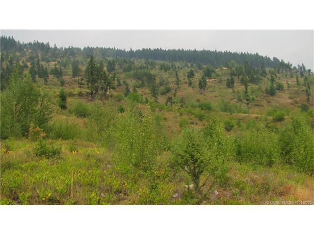 For Sale: 76 Acres Highway 6 Road, Cherryville, BC Home for $365,000. See 10 photos!