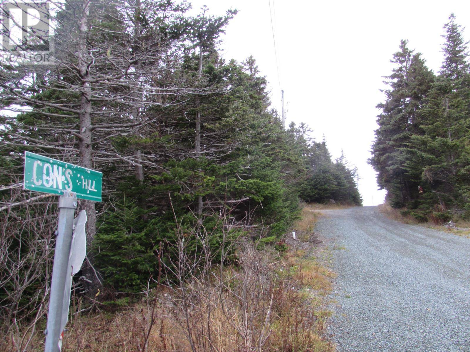 Residential property for sale at 77 Con's Hl Chapel's Cove Newfoundland - MLS: 1207618