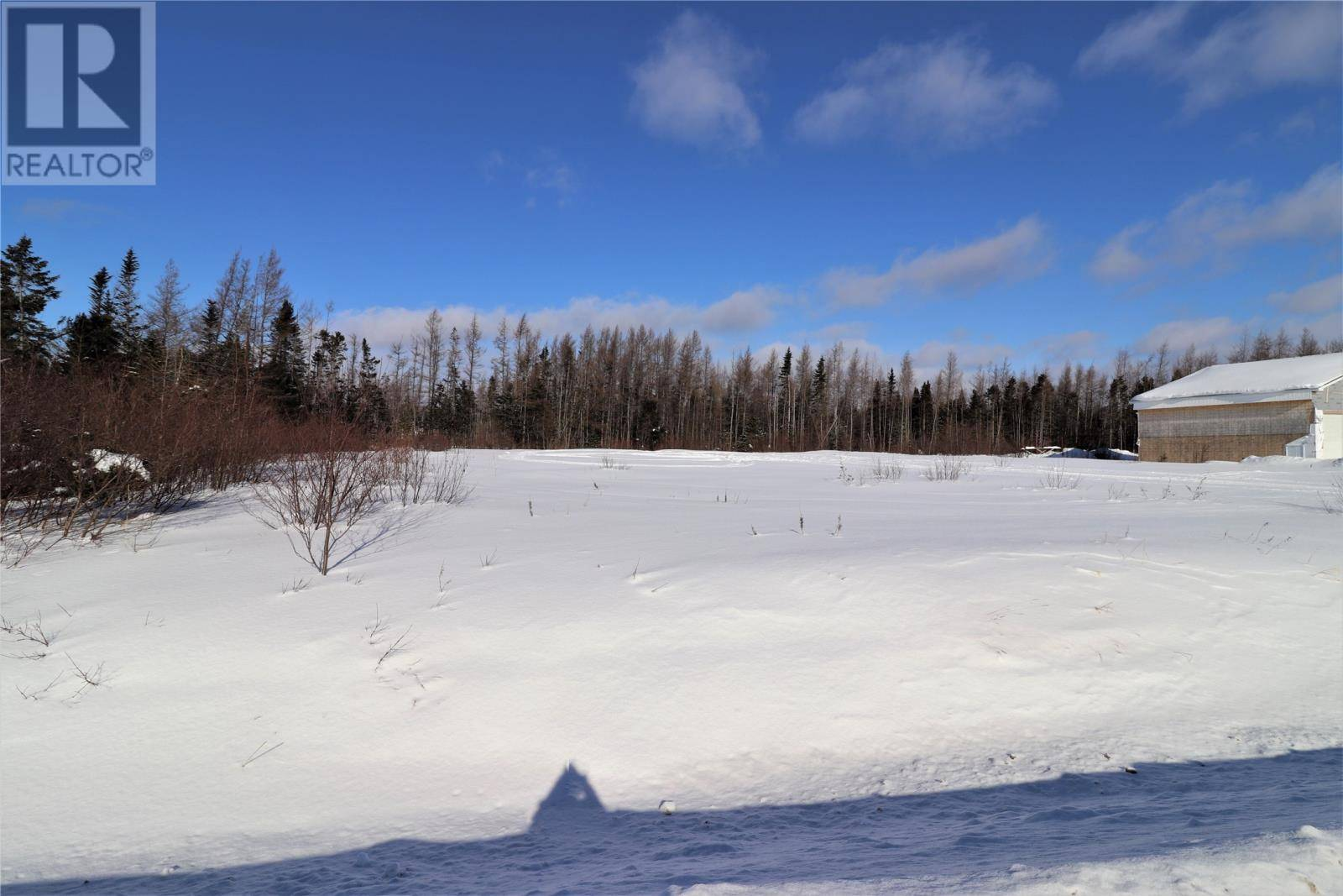 Home for sale at 79 Wights Rd Deer Lake Newfoundland - MLS: 1211500