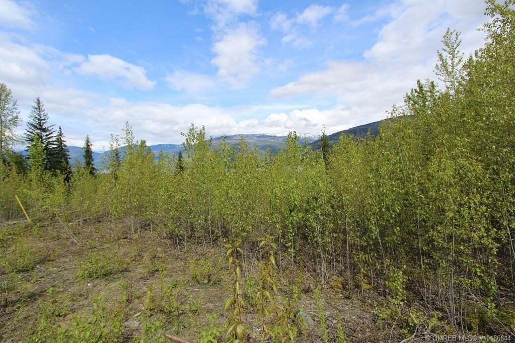 Residential property for sale at Lot 81 Sunset Dr Unit 81 Eagle Bay British Columbia - MLS: 10186644