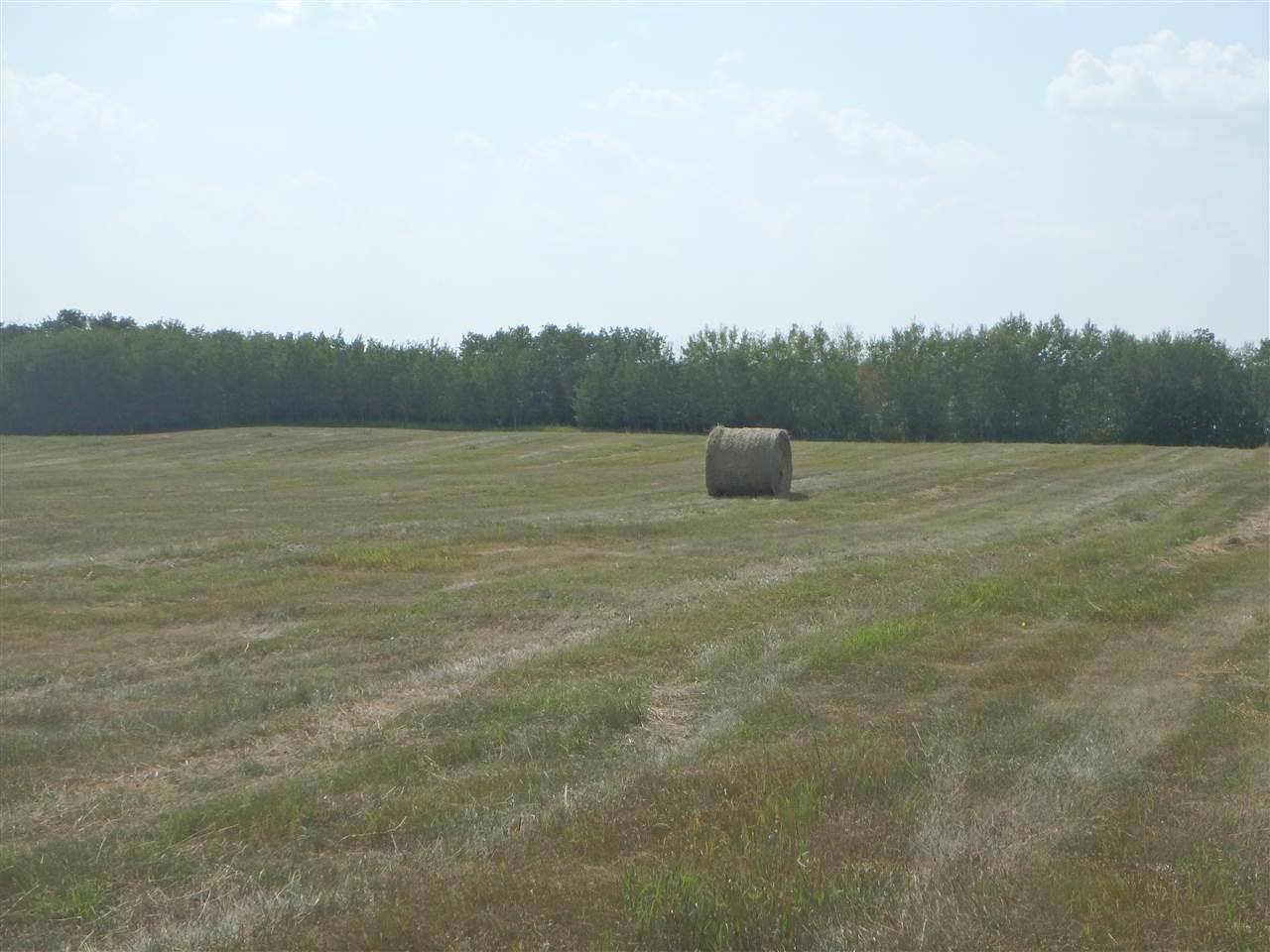 814 Highway, Rural Leduc County | Image 2