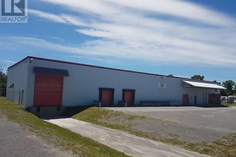 Home for rent at 816 John Counter Blvd Unit 816a Kingston Ontario - MLS: K19001309