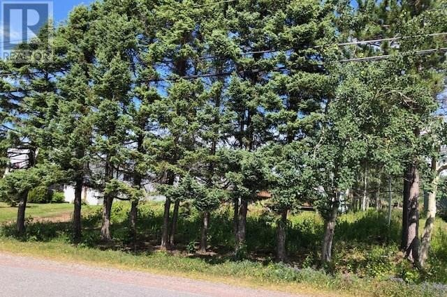 Home for sale at 83 Water St Botwood Newfoundland - MLS: 1218132