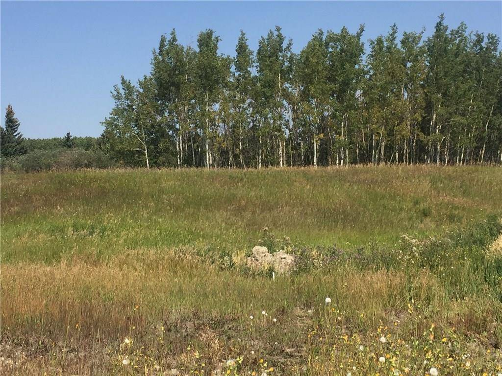 Home for sale at 84 Willow Creek Ht Bearspaw_calg, Rural Rocky View County Alberta - MLS: C4223354
