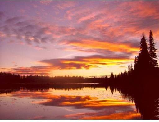 Home for sale at 8410 Wilson Lake Rd Bridge Lake British Columbia - MLS: R2384509