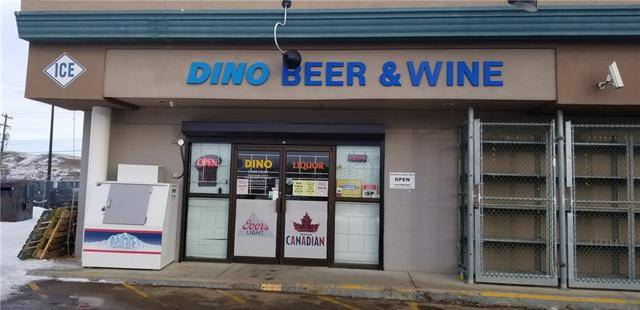 Commercial property for sale at 1102 Highway 9 Hy South Unit 9 Drumheller Alberta - MLS: C4287642