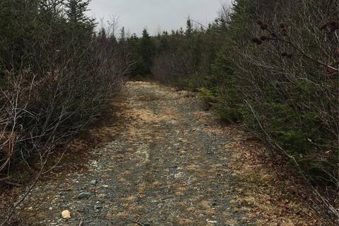 Residential property for sale at 9 Lewis Rd Holyrood Newfoundland - MLS: 1195440